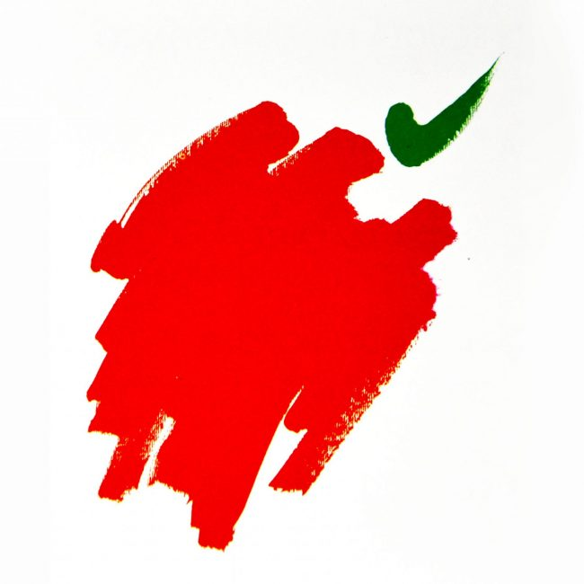 Coco Cano | Grafica